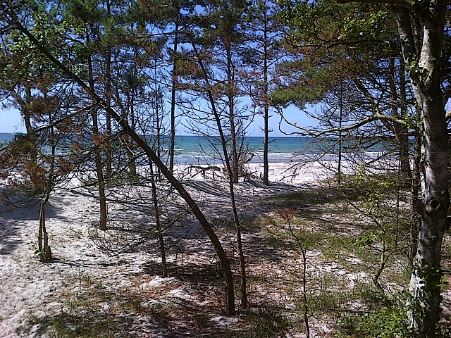 Bornholm - Strand bei Dueodde - herrrlich feiner Sand