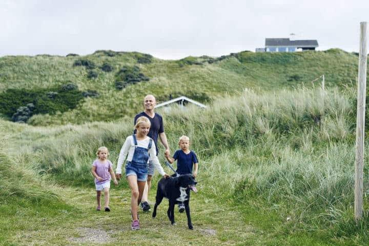 Ferienhaus Dänemark mit Hund